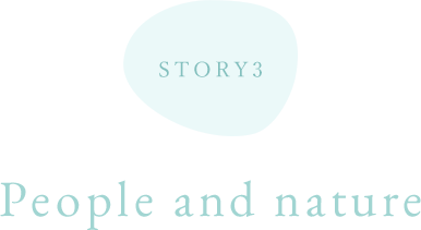 STORY 3